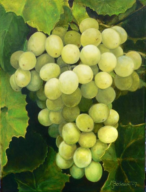 Druiven Marielle Bedaux