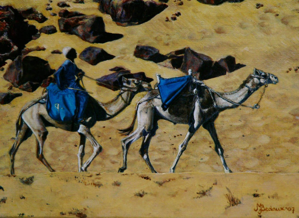 Kamelen Marielle Bedaux
